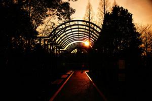 公園008.jpg