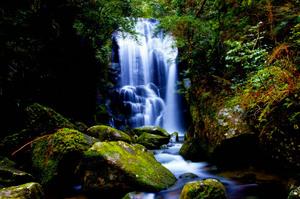 和歌山県 桑の木の滝2.jpg