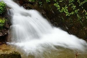 熊野川沿い 無名滝2.jpg
